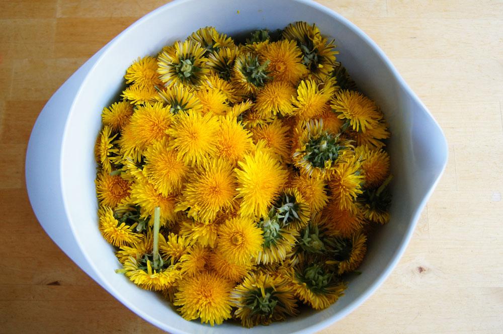 Schüssel voll gepflückter Blüten